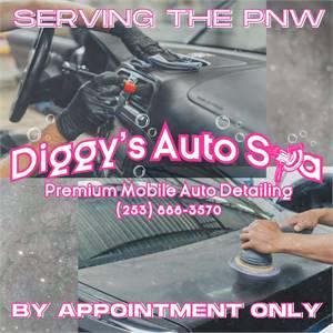 Premium Mobile Detailing by Diggys Auto Spa