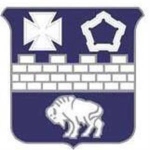 "1-17 Infantry ""Buffaloes"""