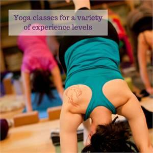 Online Classes, Teacher Training and more - Three Trees Yoga & Healing Arts Center