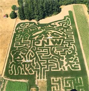 Rutledge Corn Maze Sep 18 to Oct 31
