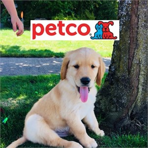 Petco to Open On-Installation Retail Stores with the Exchange